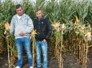 Krajowe dni kukurydzy - 15.09.2017_6