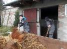 Wizyta w stadninie koni u państwa Kucharskich_11