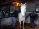 Wizyta w stadninie koni u państwa Kucharskich_20