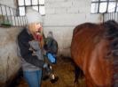Wizyta w stadninie koni u państwa Kucharskich_33