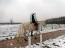 Wizyta w stadninie koni u państwa Kucharskich_38
