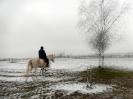Wizyta w stadninie koni u państwa Kucharskich_42