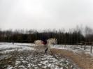 Wizyta w stadninie koni u państwa Kucharskich_43