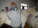 Wizyta w stadninie koni u państwa Kucharskich_8