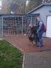 Z wizytą we włocławskim Schronisku dla zwierząt_16
