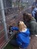 Z wizytą we włocławskim Schronisku dla zwierząt_4
